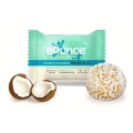 Bounce Natural Energy Balls - Coconut Macadamia Protein Bliss