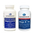 Sanderson Stress Buster - One A Day Mega B FX Plus Magnesium FX 1000