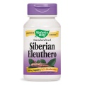 Natures Way Siberian Eleuthero Standardised