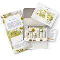 Dr Hauschka Clarifying Face Care Kit (for combination and blemished, oily skin)